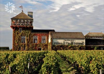 Réserver un château prestigieux de la région des vins pour un événement